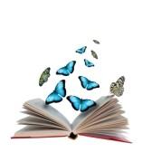 14051913 Ouvrir Le Livre Avec Des Papillons Volant De L 39